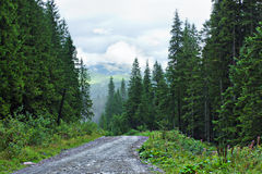 Stony dirt road in mountains with aerial view from mount Hoverla - Ukraine Stock Photography