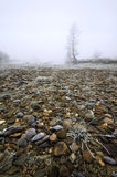 Stony frosty river bank in mist. A wide view over a stony frosty river bank in winter Royalty Free Stock Photography