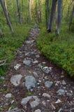 Stony hiking trail. Royalty Free Stock Photos