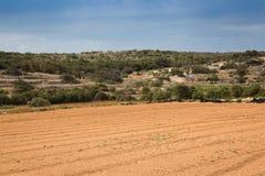 Stony land in Malta. Reclamation of stony soil on the island of Malta is hard for small farmers Stock Photography
