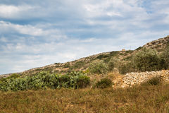 Stony land in Malta. Reclamation of stony soil on the island of Malta is hard for small farmers Royalty Free Stock Photo