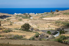 Stony land in Malta. Reclamation of stony soil on the island of Malta is hard for small farmers Royalty Free Stock Photography