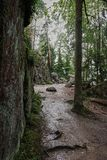 Stony path in the forest. In the forest, there is a path covered with a small stone. On the right is a stone wall covered with moss. Natural park `Monrepo` in Royalty Free Stock Photography