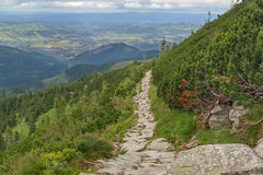 A stony path high in the mountains. Zakopane, Tatra Mountains, Poland. Royalty Free Stock Image