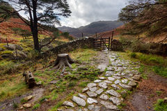 Stony Path in the Lake District Royalty Free Stock Photos