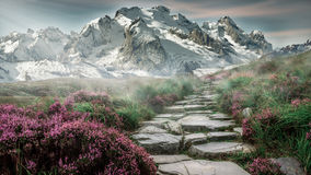 Stony path through mountain valley Stock Photography
