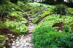 Stony path and stairs in the green garden Stock Images
