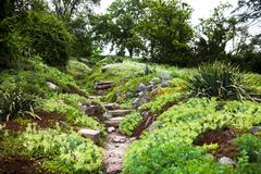 Stony path and stairs in the green garden Royalty Free Stock Photo