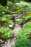 Stony path and stairs in the green garden Royalty Free Stock Image