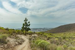 Stony path at upland surrounded by endemi plants. Sunny day. Clear blue sky and some clouds along the horizon line. Rocky tracking. Road in dry mountain area stock photo