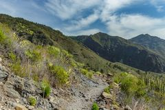 Stony path at upland surrounded by endemic plants. Sunny day. Clear blue sky and some clouds above the mountains. Rocky tracking. Road in dry mountain area stock image