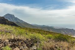 Stony path at upland surrounded by endemic plants. Sunny day. Clear blue sky and some clouds above the mountains. Rocky tracking. Road in dry mountain area stock photos