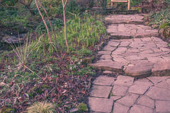 Stony pathway Stock Photography