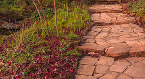Stony pathway Stock Photos