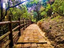 Stony Pathway towards Arwah Lumshyna Cave stock image