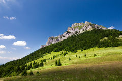 Stony peak in summer Royalty Free Stock Image