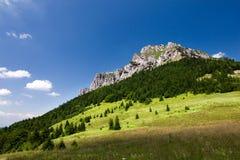 Stony peak in summer royalty free stock image