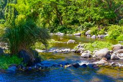 The stony river and the beautiful weather royalty free stock photos
