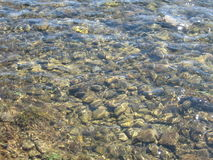 Stony river bottom through transparent water, different sizes of stones. Stony river bottom through transparent water Royalty Free Stock Photography