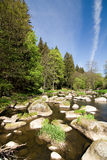 Stony river in the spring countryside stock photo
