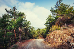The stony road in the mountains. Royalty Free Stock Photo
