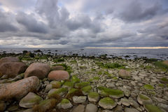Stony sea bank Stock Images