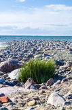 Stony shore of Baltic sea Royalty Free Stock Photos