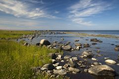 A stony shore at Bornhom. Denmark Stock Photos