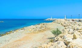 The stony shore royalty free stock photography