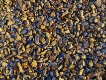 Stony shore in the rays of sunset. royalty free stock image