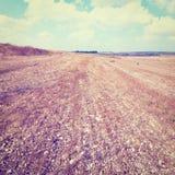 Stony Soil Stock Images