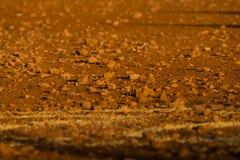 Stony Soil Stock Photos