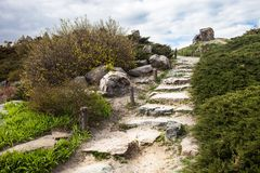 Stony stairs in the rockery in Kyiv botanical garden Royalty Free Stock Photo