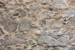 Stony wall background. Royalty Free Stock Images