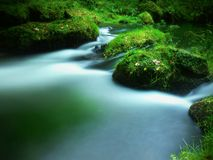 Stony  weir on small mountain river. Stream is flowing over square blocks and makes milky water. Royalty Free Stock Photo