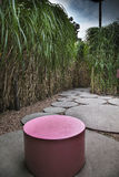 Stool. Pink stool, surrounded by a reed hedge Stock Image
