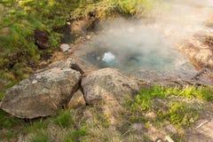 Stoom die van een geiser bij het beroemde yellowstonepark toenemen stock afbeelding