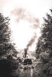 Stoomlocomotief in de Ardennen Royalty-vrije Stock Afbeeldingen