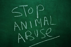 Stop animal abuse Stock Photo
