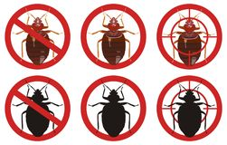 Stop bedbug signs. Set of insect pest control signs. Vector illustration. Stock Photography