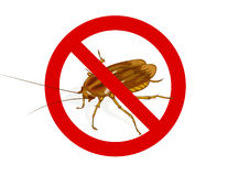 Stop Cockroach sign. Illustration Stock Photo