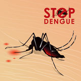 Stop Dengue fever with Mosquito sucking blood on skin vector design Royalty Free Stock Photography