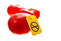 Stop GMO. Fresh red tomatoes isolated on white with a Do not disturb label on it. Stop GMO concept shot stock photo