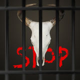 Stop hurting animals Royalty Free Stock Photo