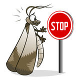 Stop moth Royalty Free Stock Image