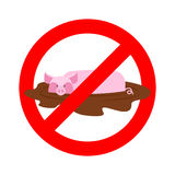 Stop pig. Ban wallow in mud. It is forbidden to be dirty Royalty Free Stock Photo