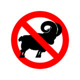 Stop ram. Attention farm animal. Red prohibitory road sign. Ban Royalty Free Stock Images