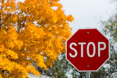 Stop Sign. You can not stop the arrival of fall Royalty Free Stock Photography