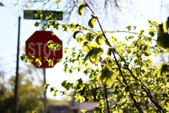 Stop Sign Art Stock Photo