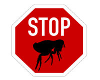 Stop sign for fleas Stock Photo